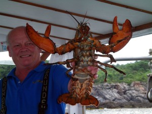 Lobstering Trip in Ogunquit